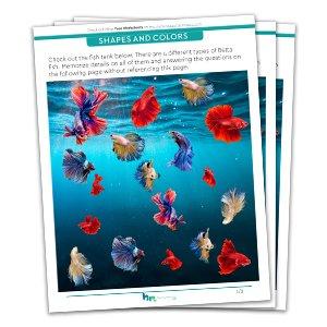 Free Visual Memory Worksheet